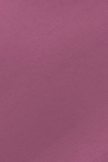 127mm Palette Grape
